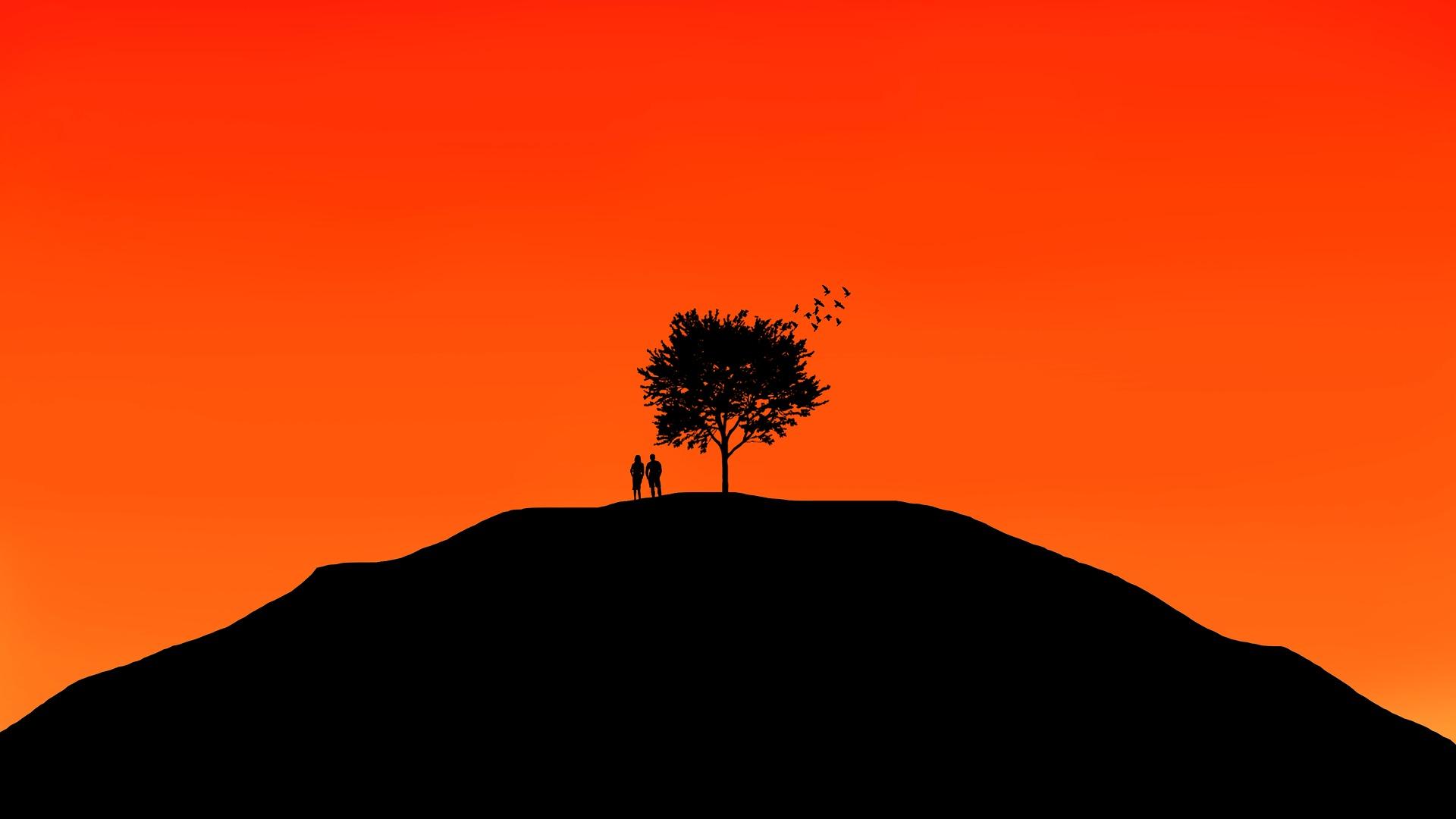 tree-2377575_1920